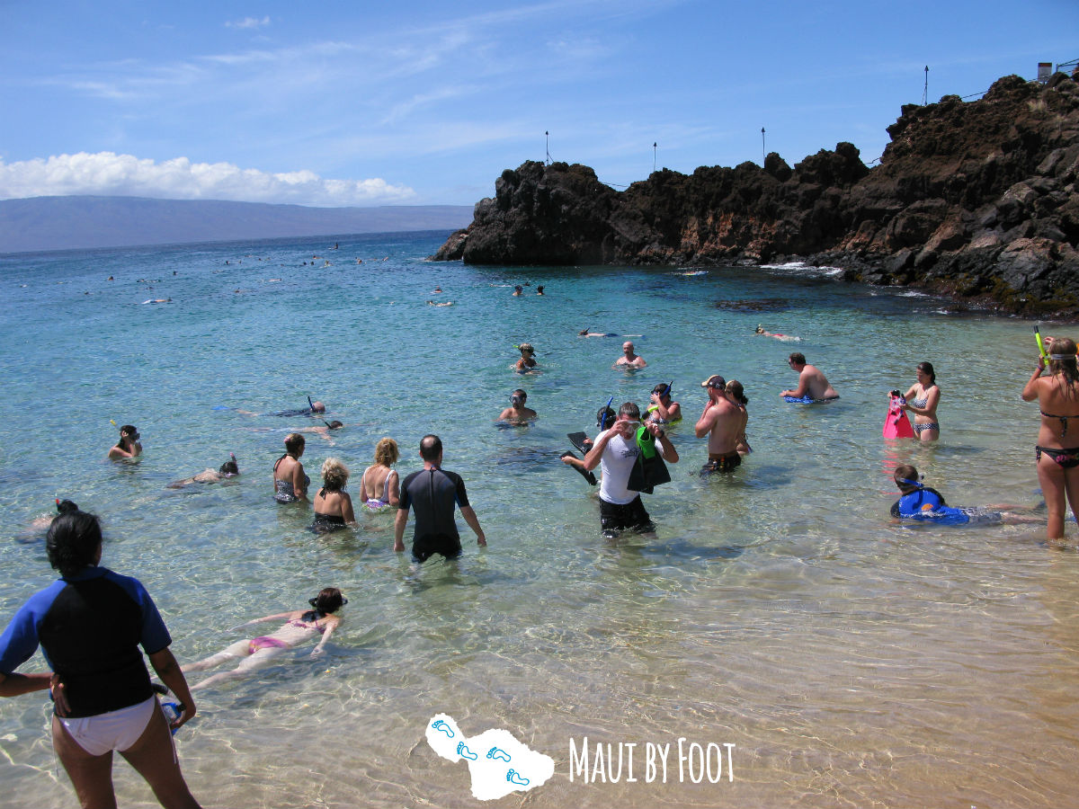 Best Beaches On Maui By Foot